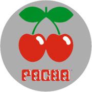 Technics Slipmats Pacha Silver